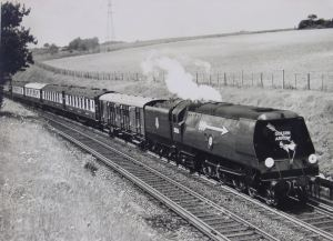 The down Golden Arrow at Knockholt Summit, just south of Knockholt station headed by Merchant Navy class 35026 Lamport and Holt Line - Thanks to Norman Johnson