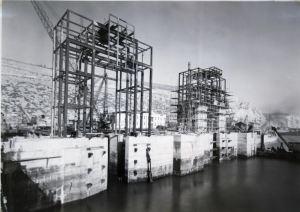 Portal Dolphins 25.11.1952. DHB - Lambert Weston