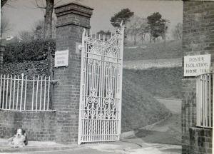 Isolation Hospital Gates, Noah's Ark Road.  Dover Library