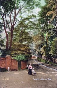 Kearsney - Alkham Valley Road c1900. Dover Library