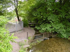 TH Modern Footbridge over the River Dour tributary showing the bifurcation at Bushy Ruff. Left stream goes to the Russell Gardens, right stream to Chiltern Brook. Alan Sencicle