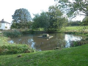 Coldred Village Pond where Nell Garlinge died during being 'swum'.