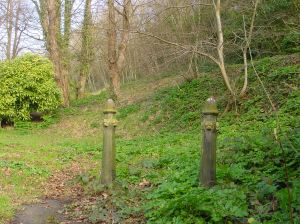 Remains of the zig-zag path at the top of Laureston Place built by the unemployed 1886