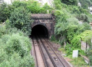 Limekiln Street railway tunnel - the line significantly reduced the acreage of the oils mills