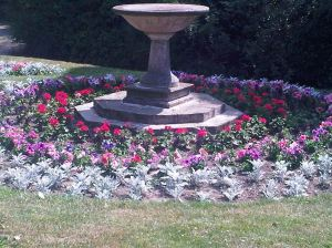 Connaught Park Flower bed on bloom - Colette Boland  2013