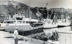 Granville Dock cargo ships, c 1960s. Dover Harbour Board