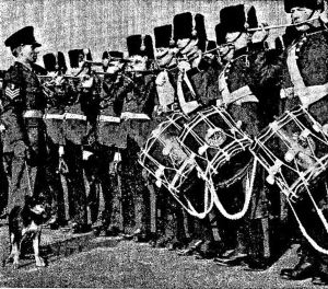 Presentation of Rover pup of Blue Peter's Petra. Note the Junior Leaders Regimental Band wearing the full dress uniform incluing busbies identical to those worn by the Corps of Engineers on ceremonial occasions before 1914. Kent Messenger December 1965