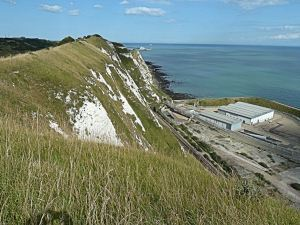 Round Down Cliff showing exposed cliff following the 1843 blast. Below is the Channel Tunnel ventilation facility. AS 2014