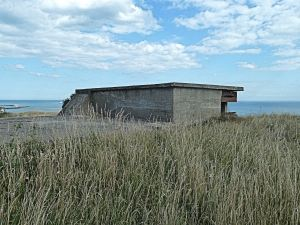 World War II battery on the site of one of the Napoleonic gun emplacements . Round Down Cliff. AS 2014