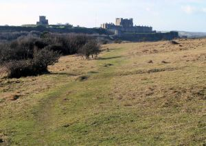 Looking towards the Castle from Swingate Down, right - St Mary-in- Castro & Northfall Meadow - now a wood. AS 2015