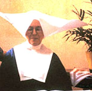 The Sisters' of St Vincent's traditional religious habit included a large, starched cornette. Internet