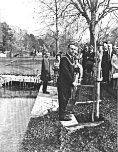 Kearsney Abbey Tree planting ceremony by Mayor Peter Mee . This was the last act by Dover Corporation in 1973 before Reorganisation. Dover Museum