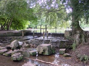 Kearsney Path and Ruins Dour. Alan Sencicle 2009
