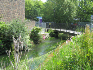 Dour foot and cycle bridge close to the further education College. LS
