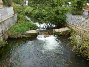 Dour weir at Charlton Green before the river goes under the Castleton Shopping Centre car parks. AS