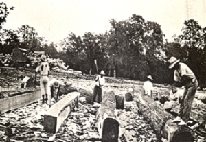 Squaring mahogany logs for export in Belize. Around 1936 from 'The forests and flora of British Honduras' by Paul Carpenter, 1884-1963. Wikimedia.org