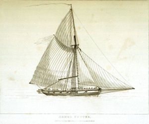Armed-cutter similar to the Countess of Elgin, c1820. National Maritime Museum. Wikimedia