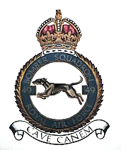 WWI The emblem of 49 Squadron that trained at Swingate in 1916. Wikimedia